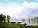 Oil painting reproduction of Buffalo Country
